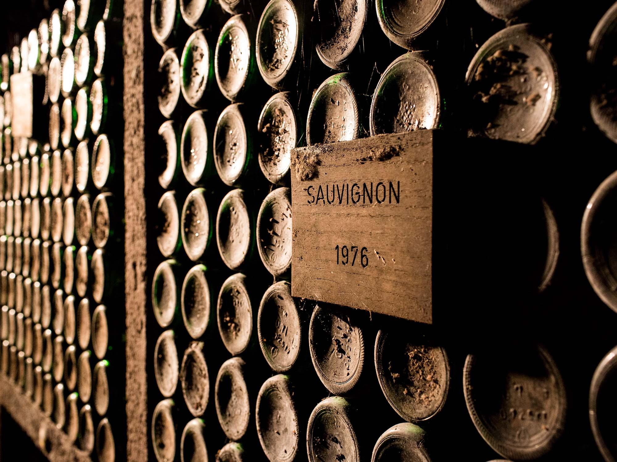 Doživetja vin podravske dežele na drugačen način