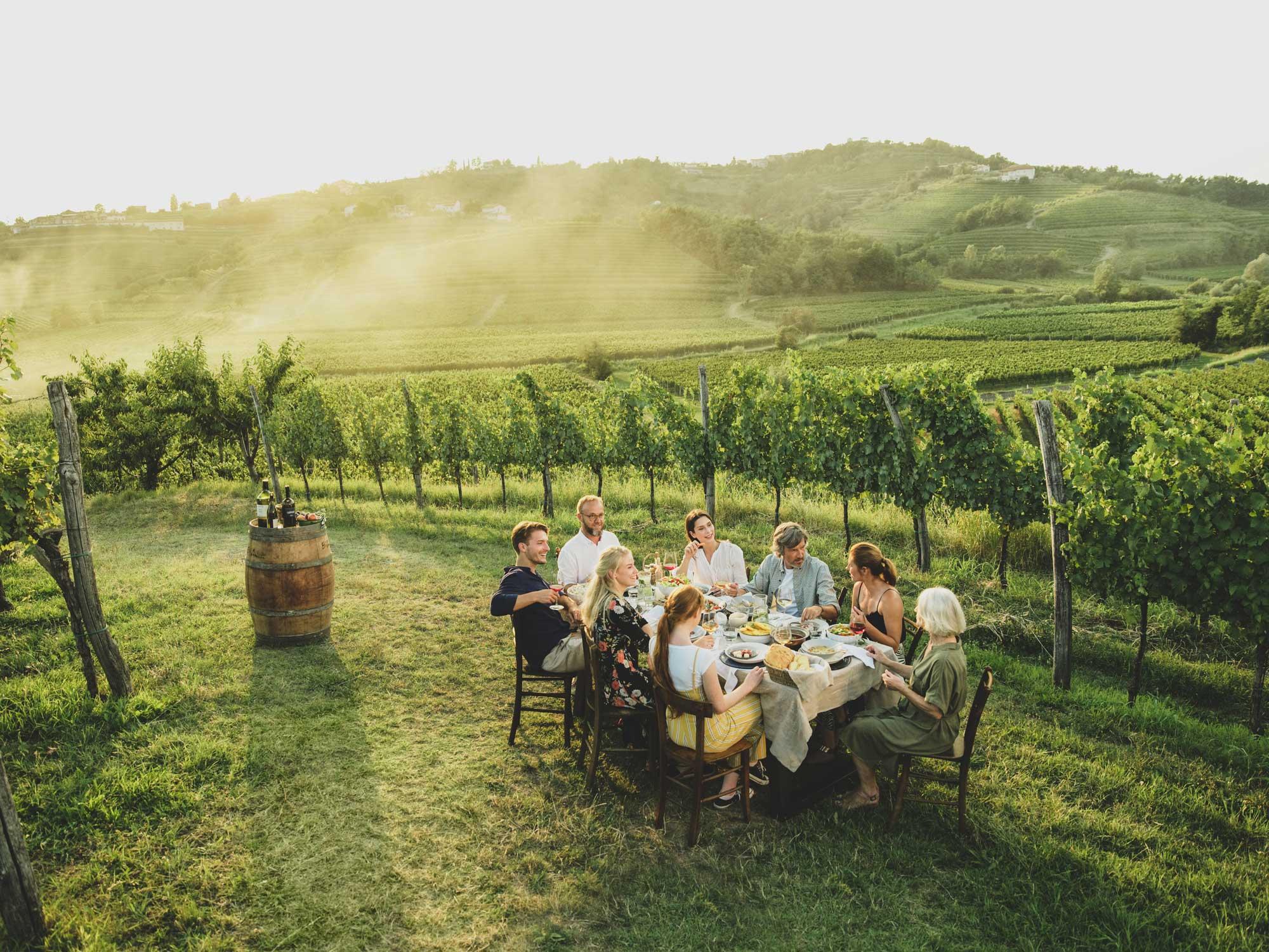 V Brda k vrhunskim vinarjem
