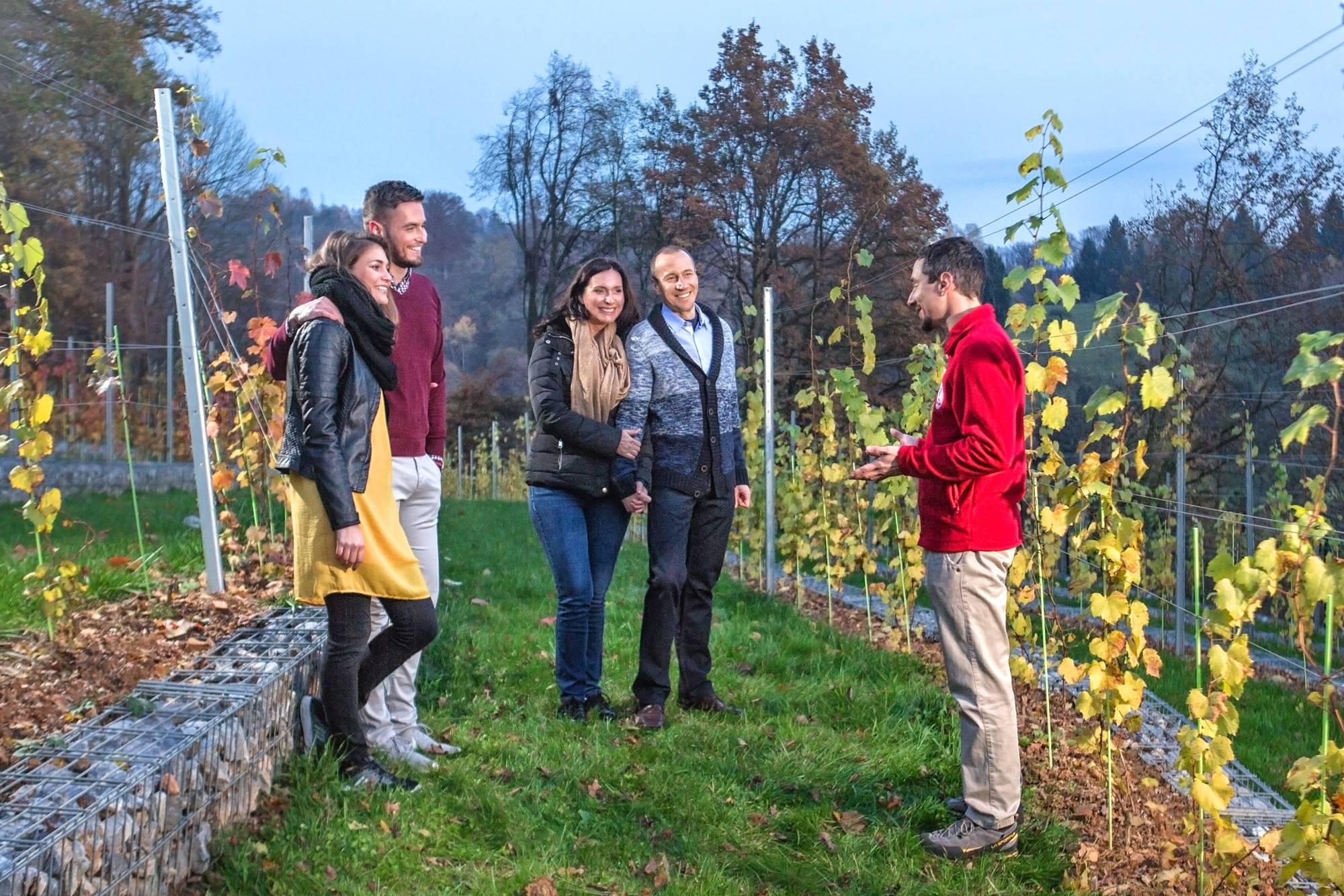 V grajski vinograd z vzpenjačo