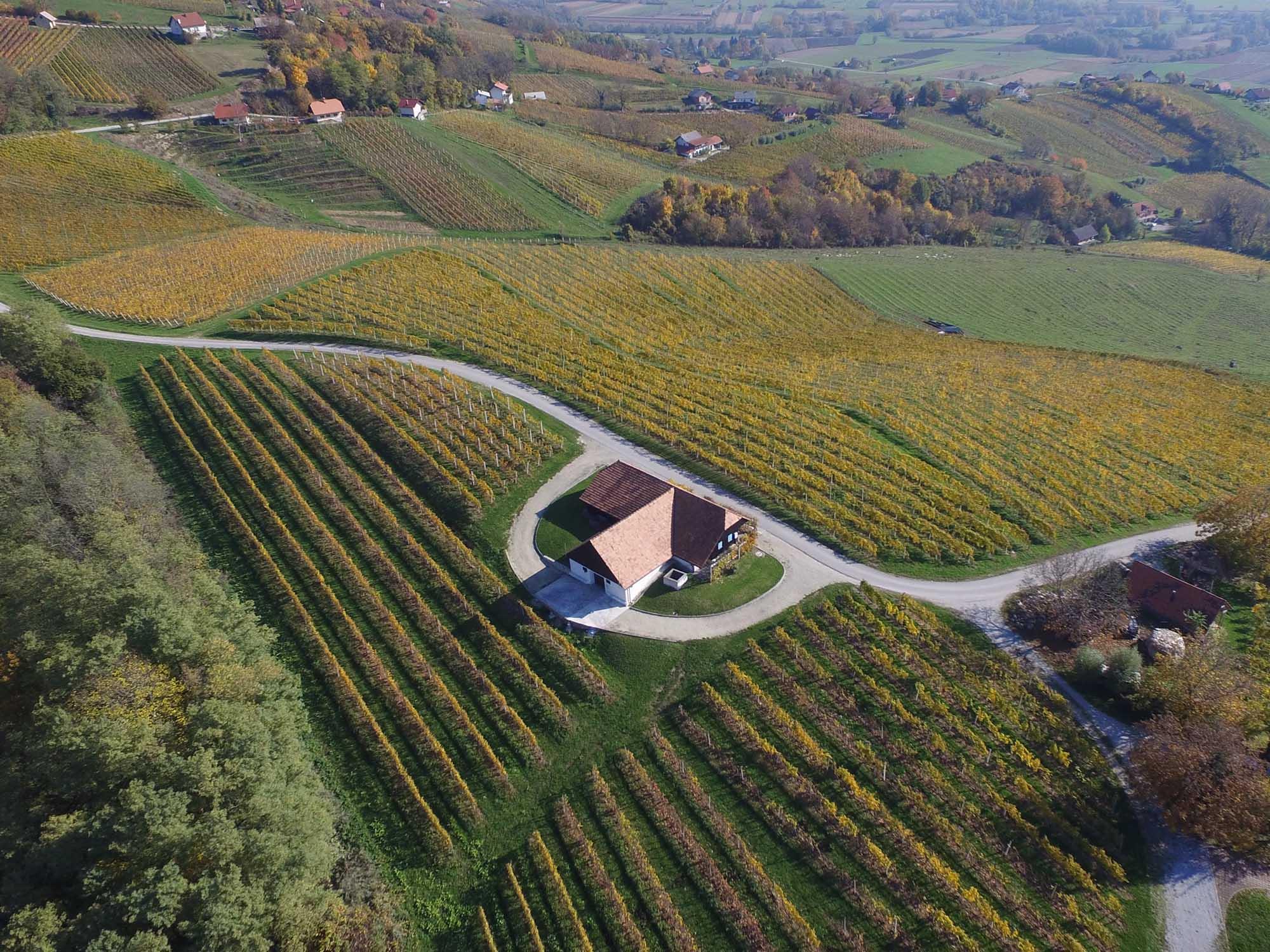 Prva slovenska zasebna hiša penin