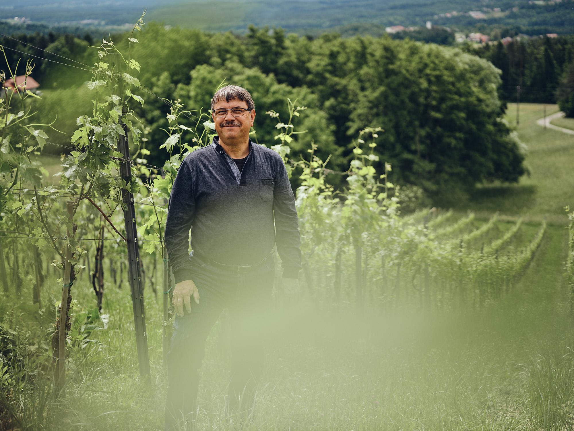 Zorjan v vinogradu