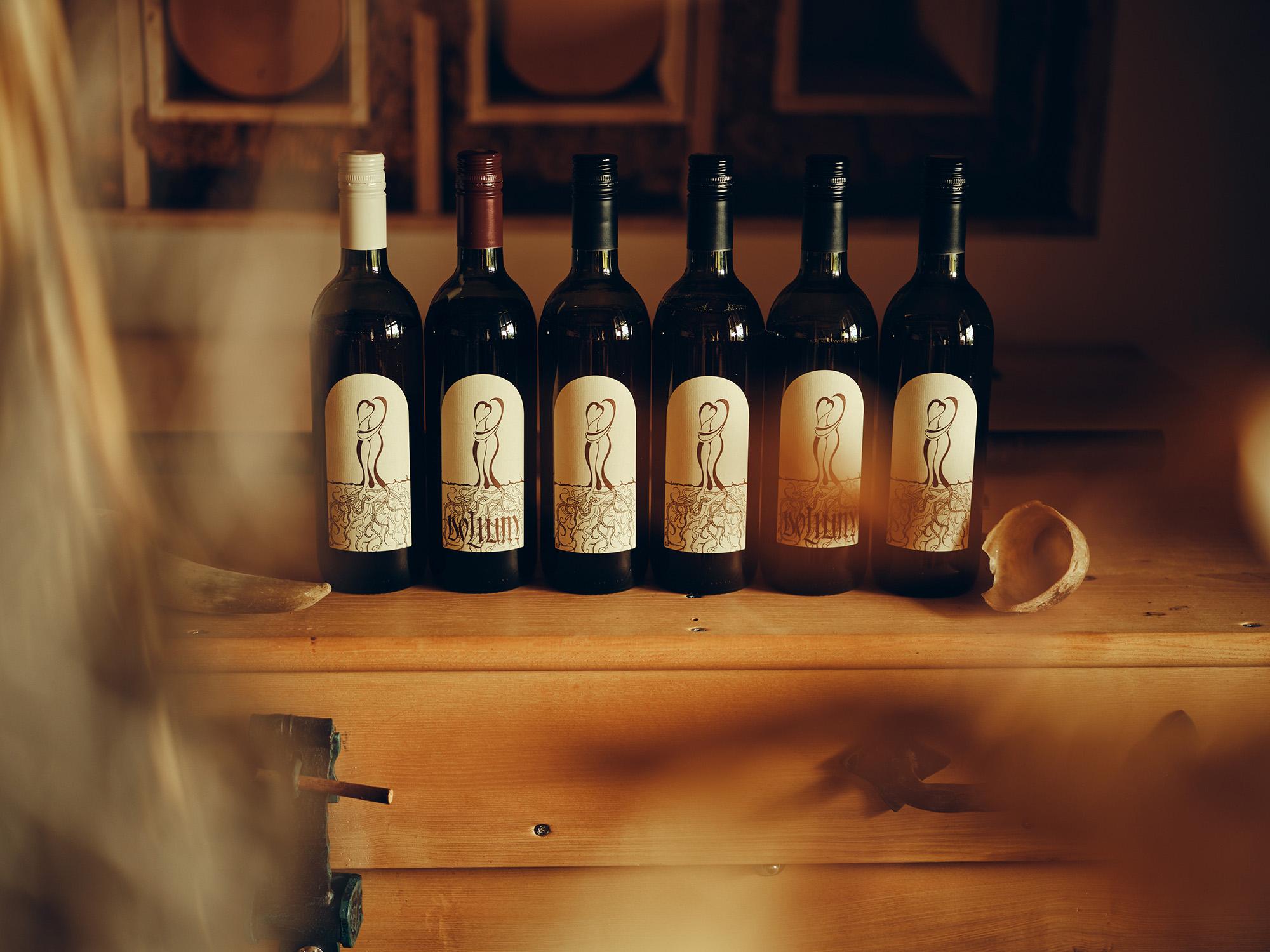 Zorjan vino
