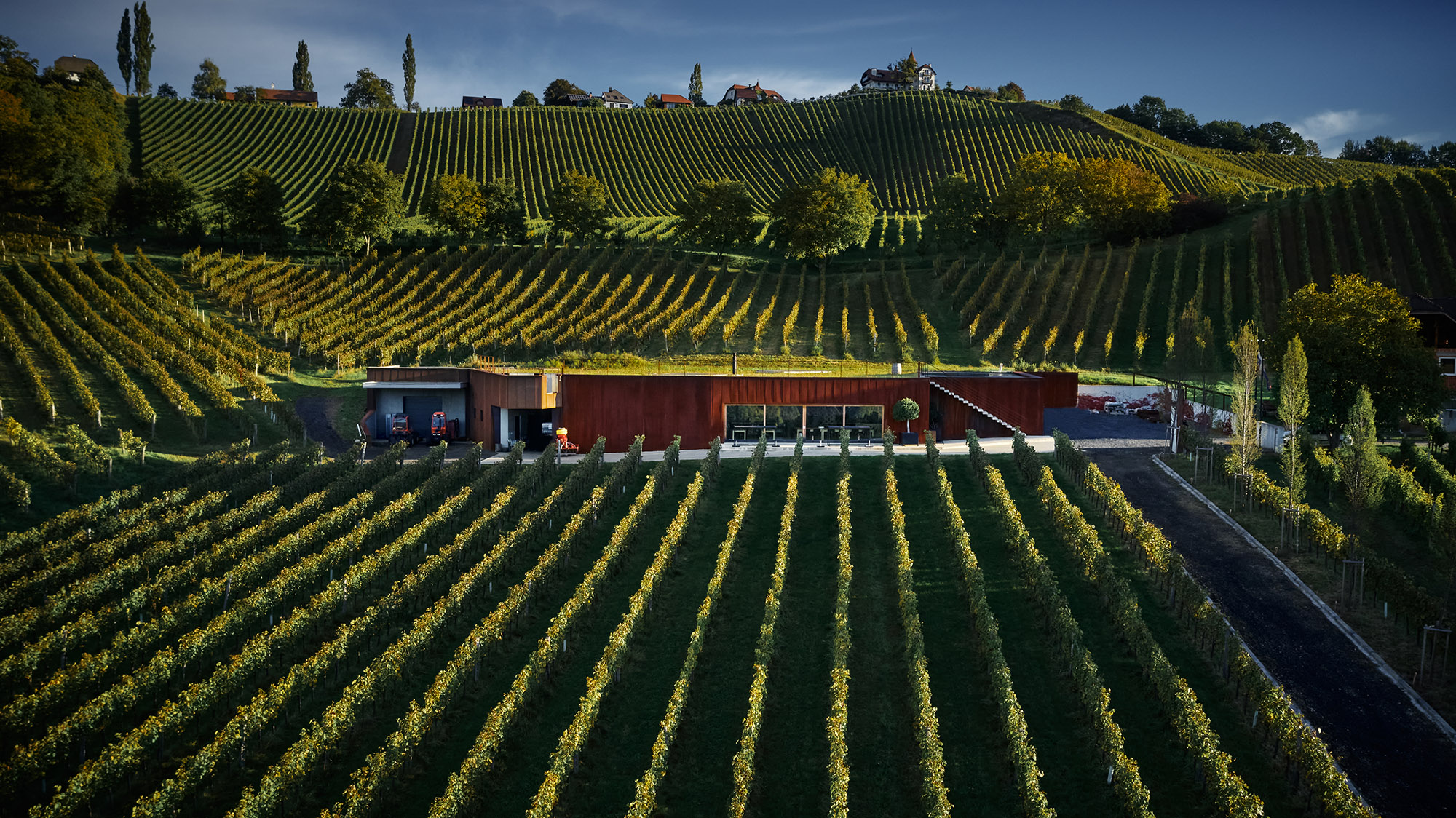 Vinska klet Ducal