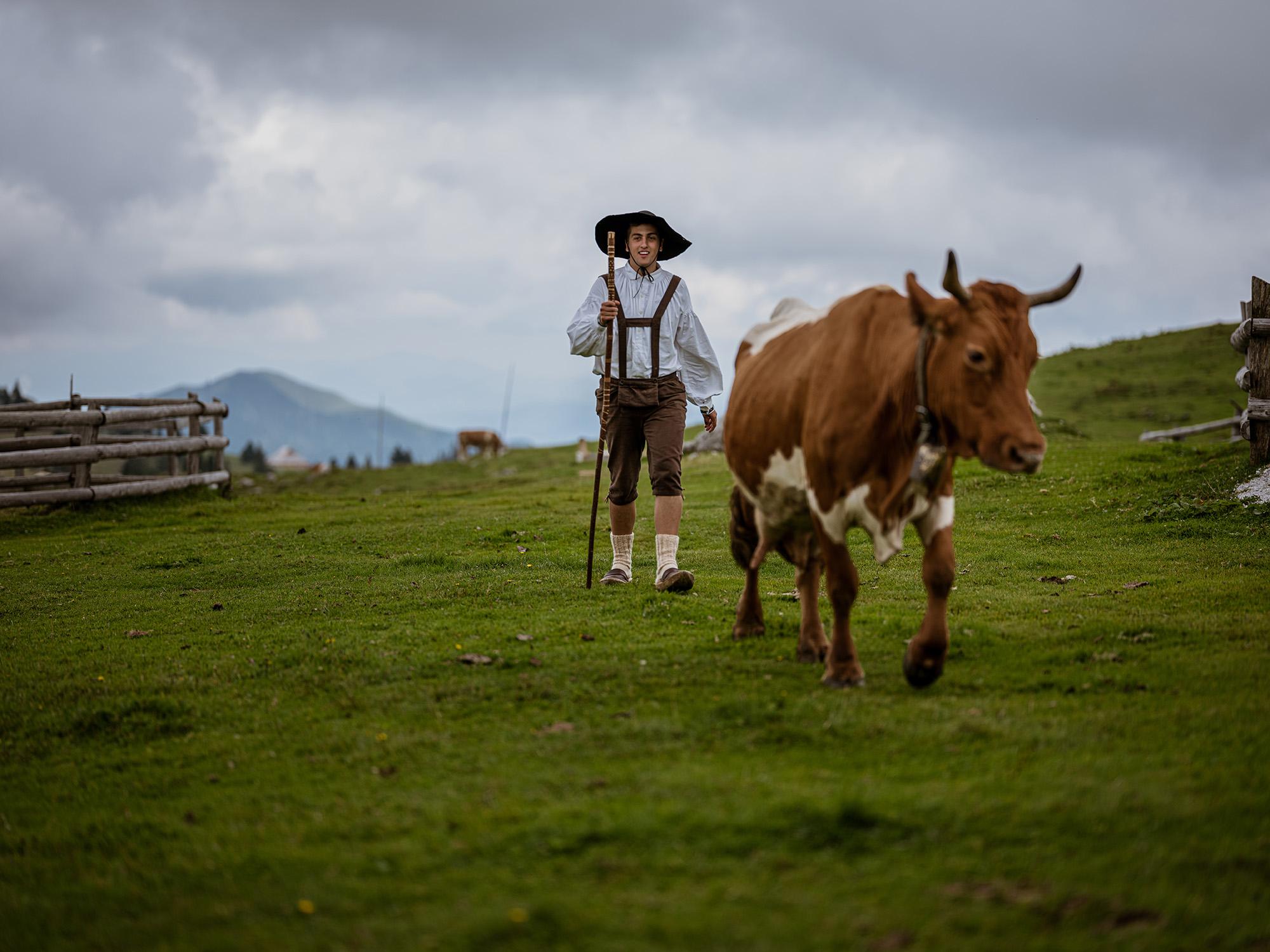 pastir na Veliki planini