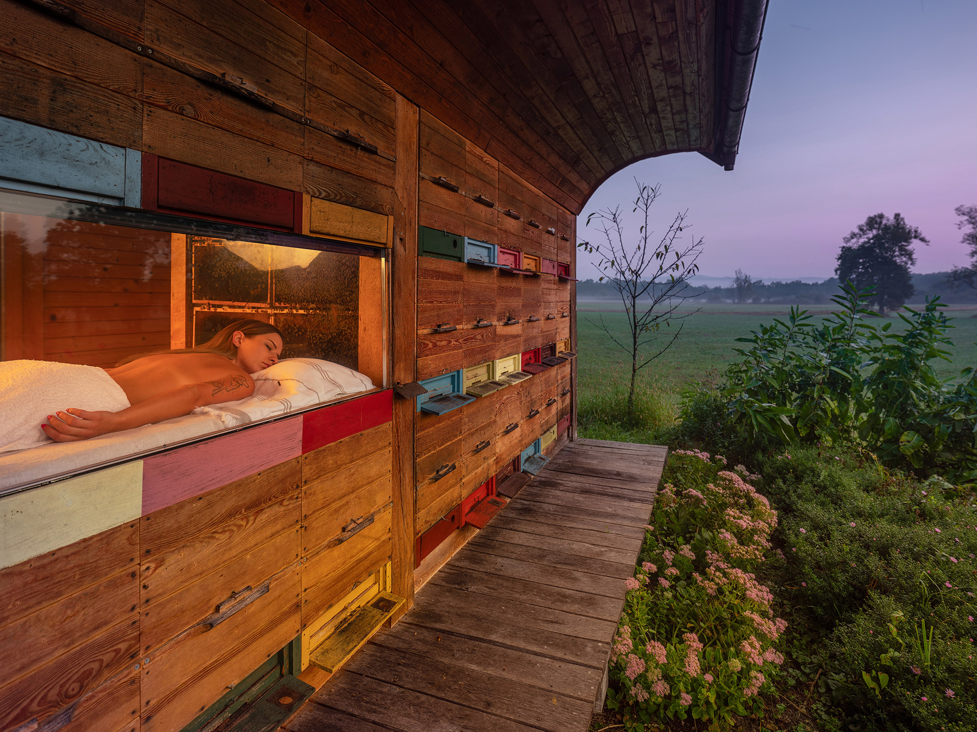 A honey experience on the edge of the Krakovski primeval forest