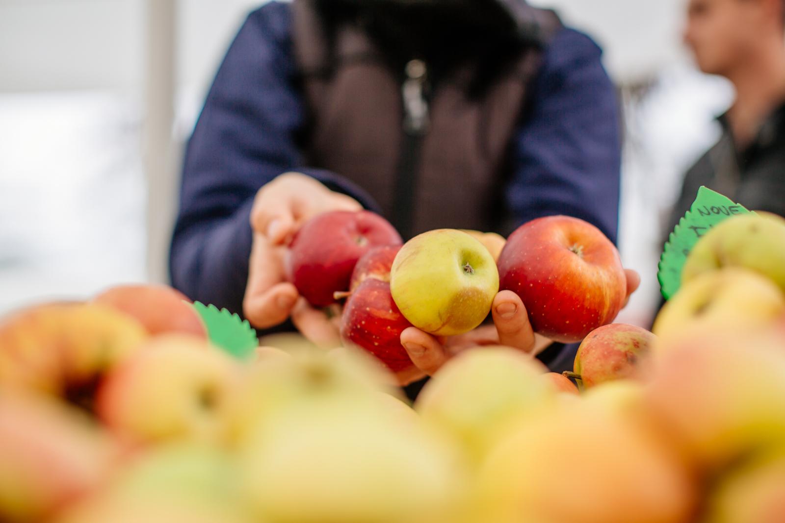jabolka na tržnici